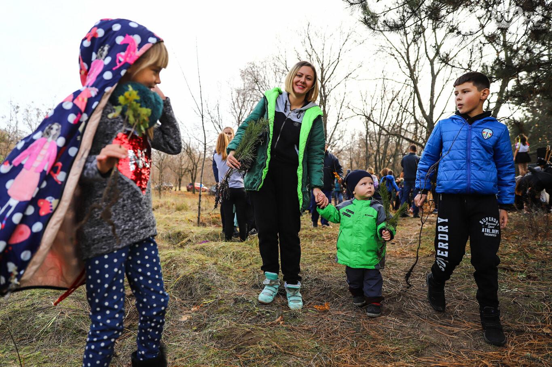 """""""Новая жизнь Хортицы"""" : на заповедном острове высадили 200 дубов и сосен, - ФОТОРЕПОРТАЖ, фото-2"""
