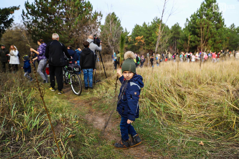 """""""Новая жизнь Хортицы"""" : на заповедном острове высадили 200 дубов и сосен, - ФОТОРЕПОРТАЖ, фото-11"""