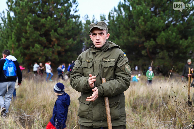"""""""Новая жизнь Хортицы"""" : на заповедном острове высадили 200 дубов и сосен, - ФОТОРЕПОРТАЖ, фото-20"""