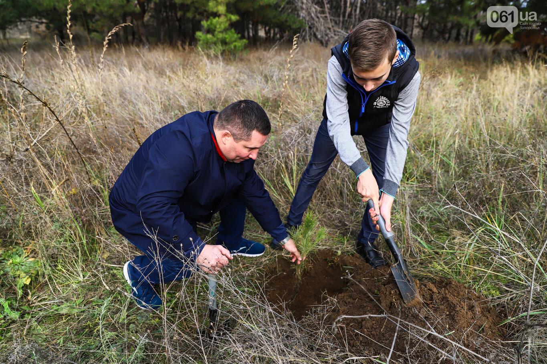 """""""Новая жизнь Хортицы"""" : на заповедном острове высадили 200 дубов и сосен, - ФОТОРЕПОРТАЖ, фото-28"""