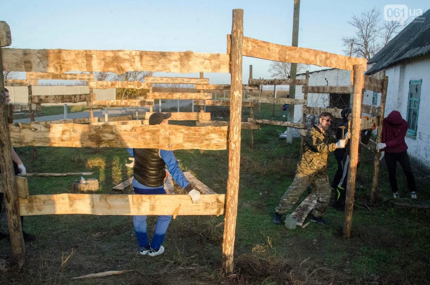 """Дезинфекция конюшни и """"бочка"""" для жеребцов: на ферме под Запорожьем прошел масштабный субботник, - ФОТОРЕПОРТАЖ , фото-8"""