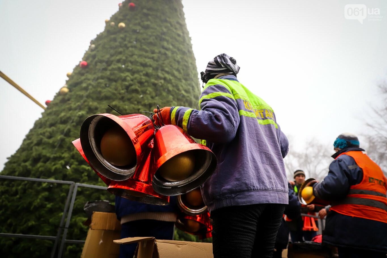 500 шаров и 25 гирлянд: на площади Маяковского наряжают главную елку Запорожья, - ФОТОРЕПОРТАЖ, фото-4
