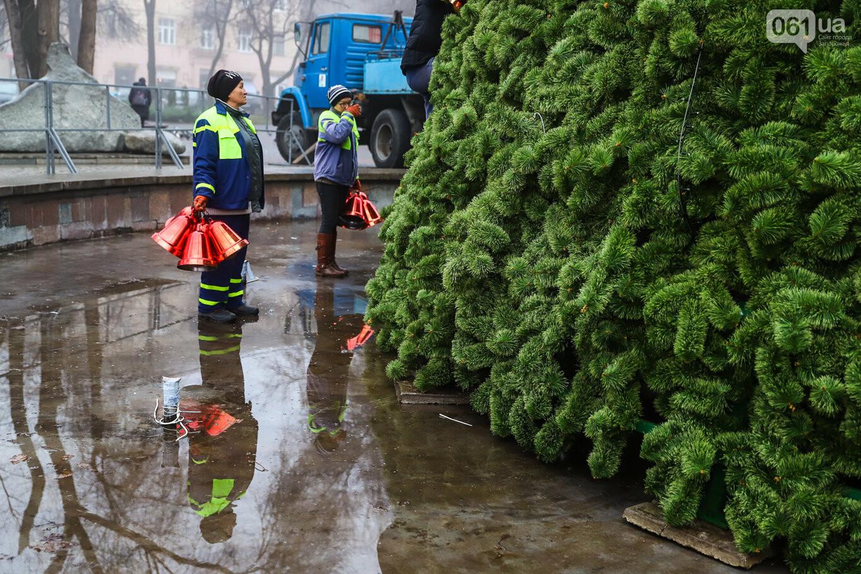 500 шаров и 25 гирлянд: на площади Маяковского наряжают главную елку Запорожья, - ФОТОРЕПОРТАЖ, фото-9