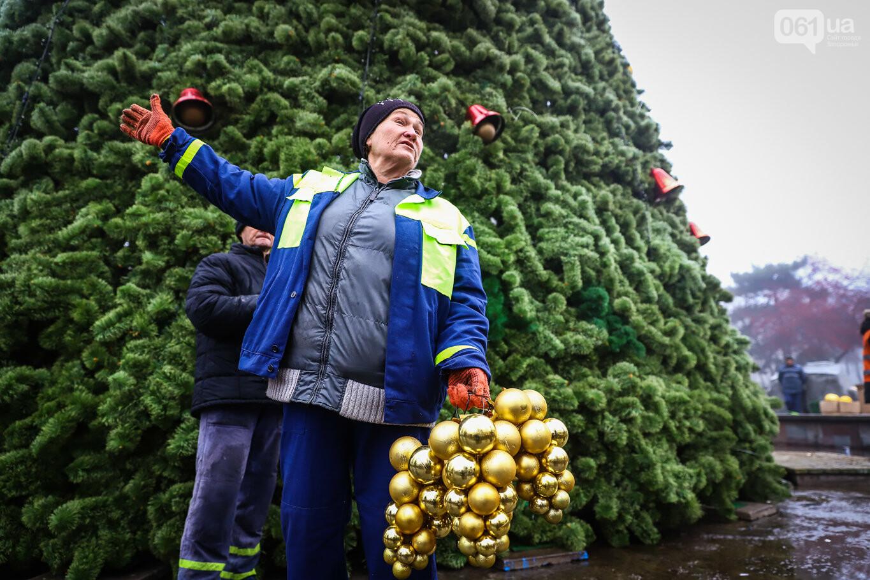 500 шаров и 25 гирлянд: на площади Маяковского наряжают главную елку Запорожья, - ФОТОРЕПОРТАЖ, фото-18