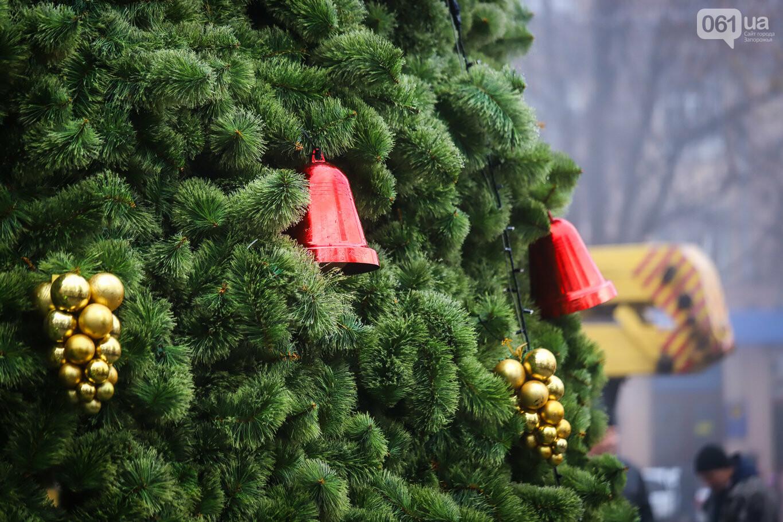 500 шаров и 25 гирлянд: на площади Маяковского наряжают главную елку Запорожья, - ФОТОРЕПОРТАЖ, фото-25