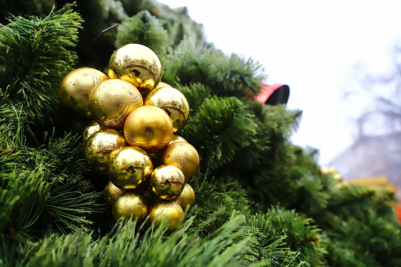500 шаров и 25 гирлянд: на площади Маяковского наряжают главную елку Запорожья, - ФОТОРЕПОРТАЖ, фото-26