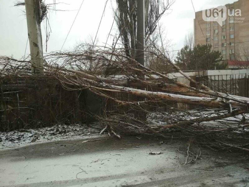 Застрявшие авто, поваленные деревья и спецтехника на дорогах: последствия бушевавшего в Запорожской области циклона, - ФОТО, фото-5
