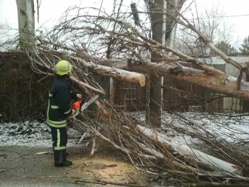Застрявшие авто, поваленные деревья и спецтехника на дорогах: последствия бушевавшего в Запорожской области циклона, - ФОТО, фото-6