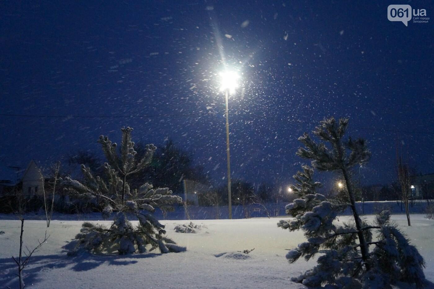 Ночная метель и заснеженный парк с высоты: жители Запорожской области делятся зимними фото , фото-11