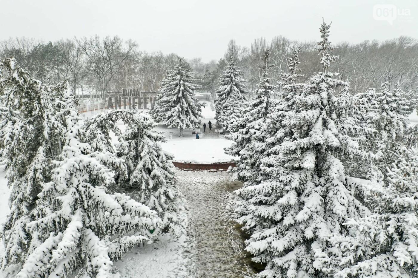 Ночная метель и заснеженный парк с высоты: жители Запорожской области делятся зимними фото , фото-2