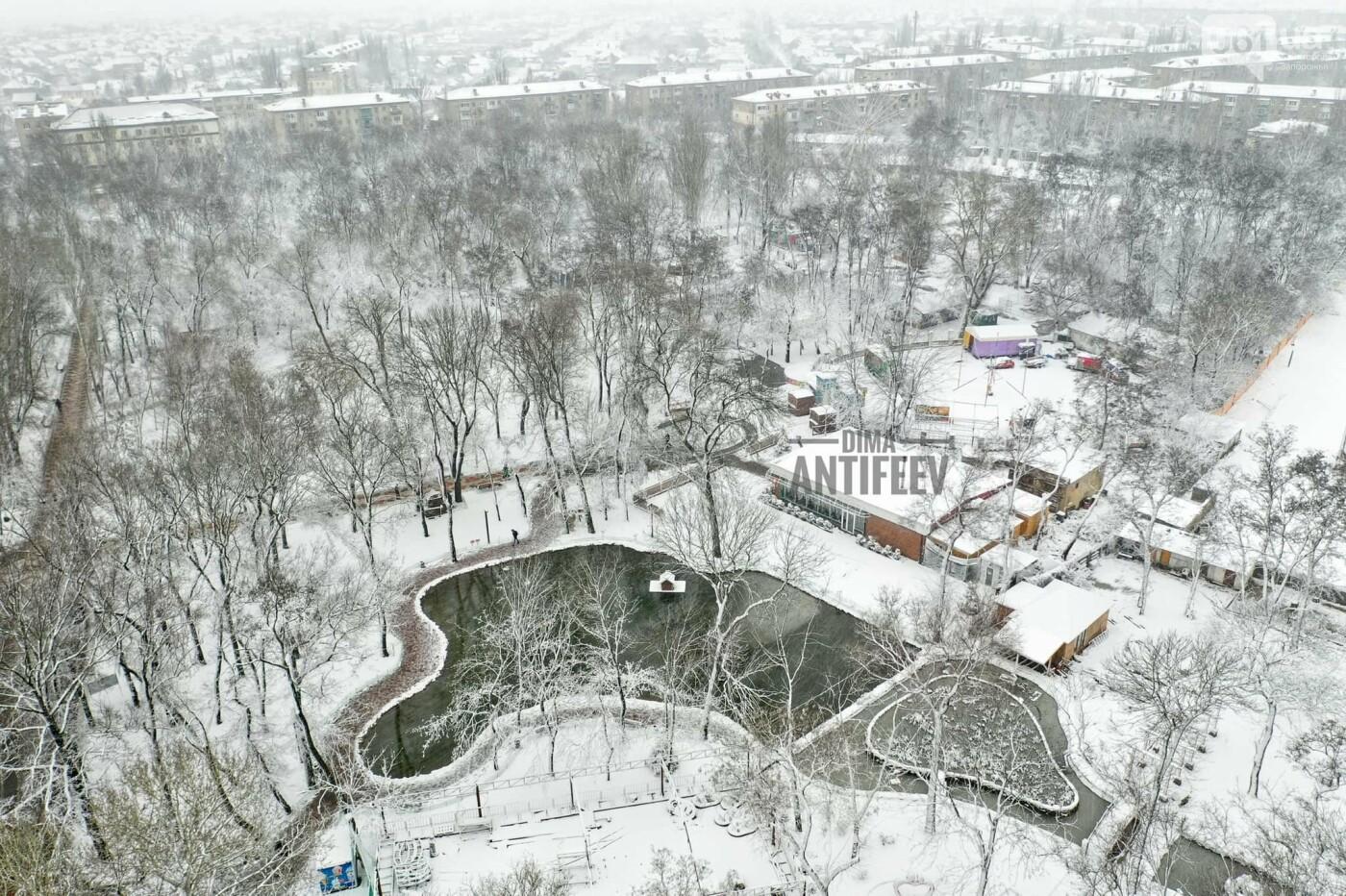 Ночная метель и заснеженный парк с высоты: жители Запорожской области делятся зимними фото , фото-3