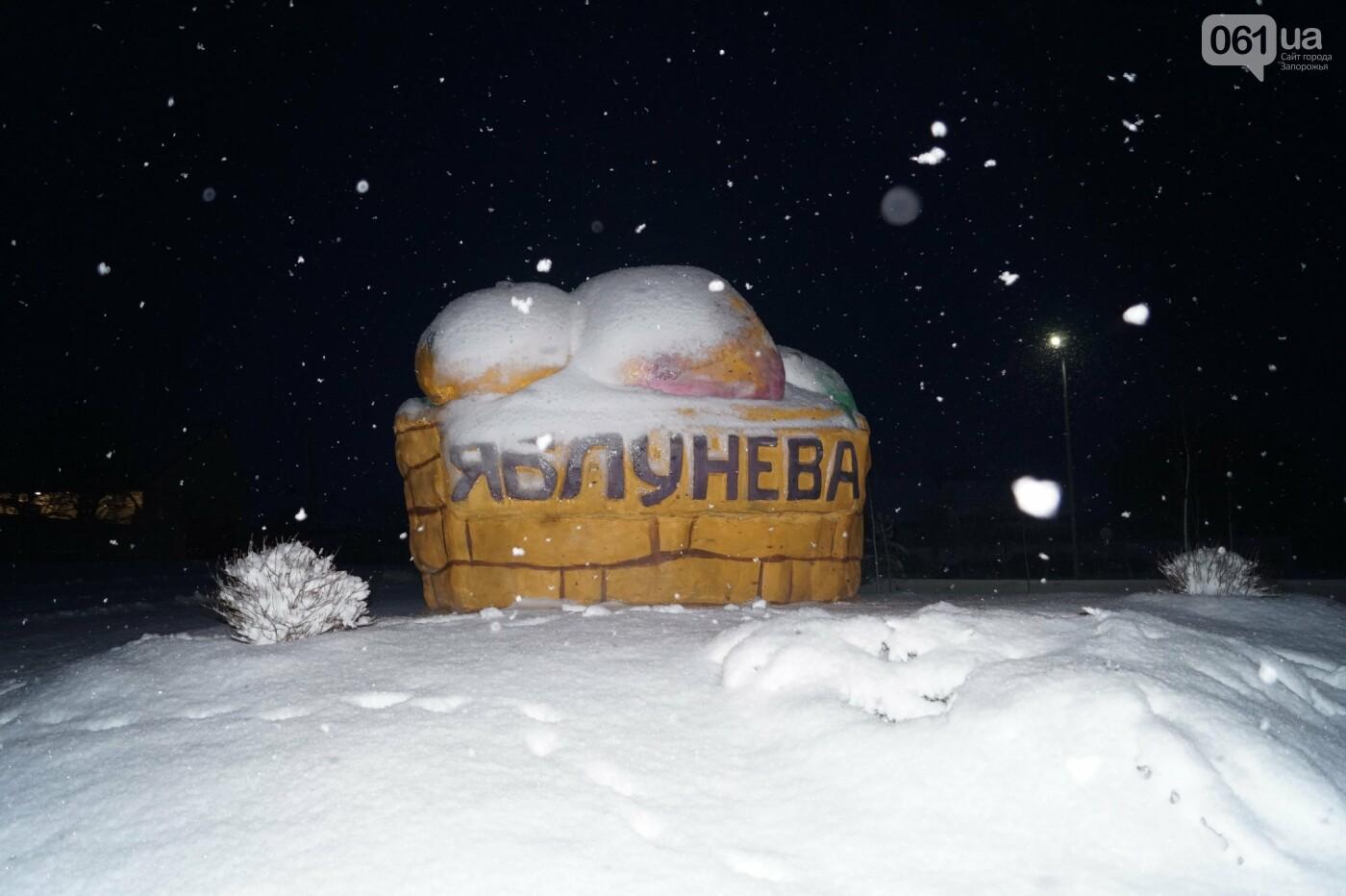 Ночная метель и заснеженный парк с высоты: жители Запорожской области делятся зимними фото , фото-12