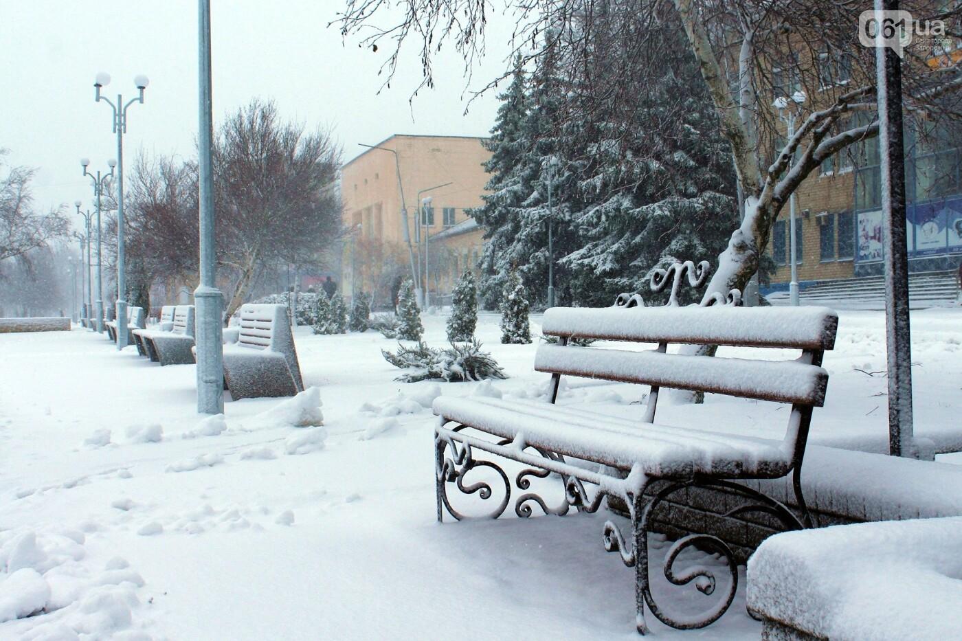 Ночная метель и заснеженный парк с высоты: жители Запорожской области делятся зимними фото , фото-6