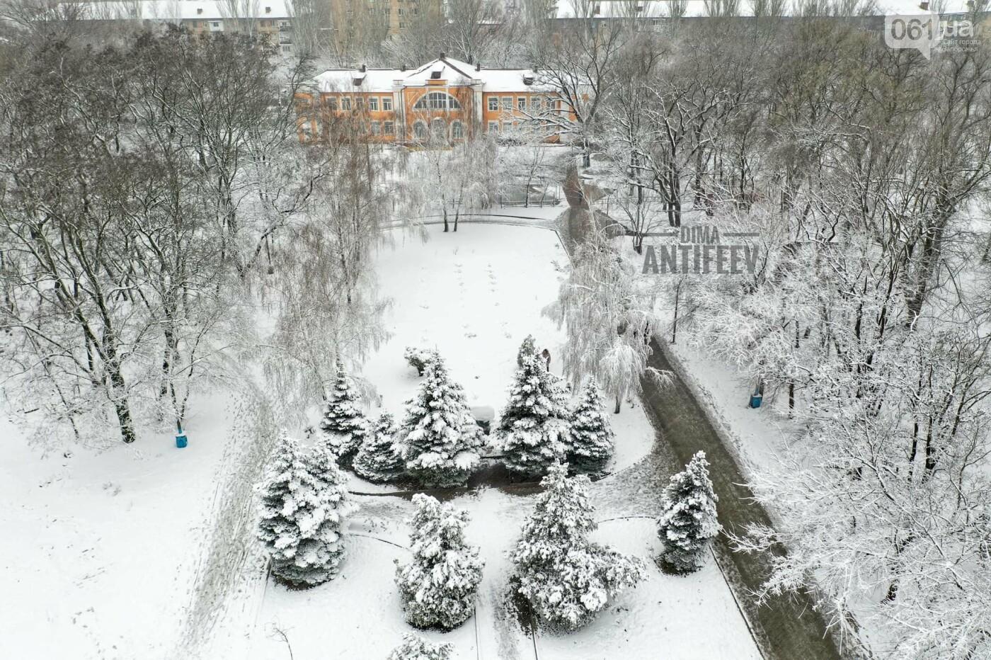Ночная метель и заснеженный парк с высоты: жители Запорожской области делятся зимними фото , фото-5