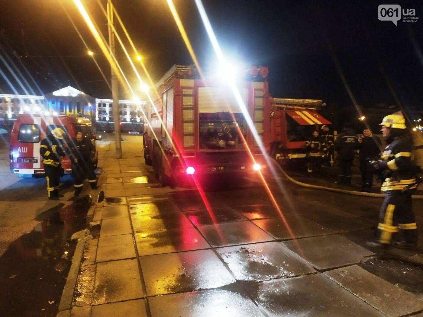В Запорожье в ДК «Днепроспецсталь» горел выставочный зал: погибли несколько питомцев, - ФОТО, фото-4