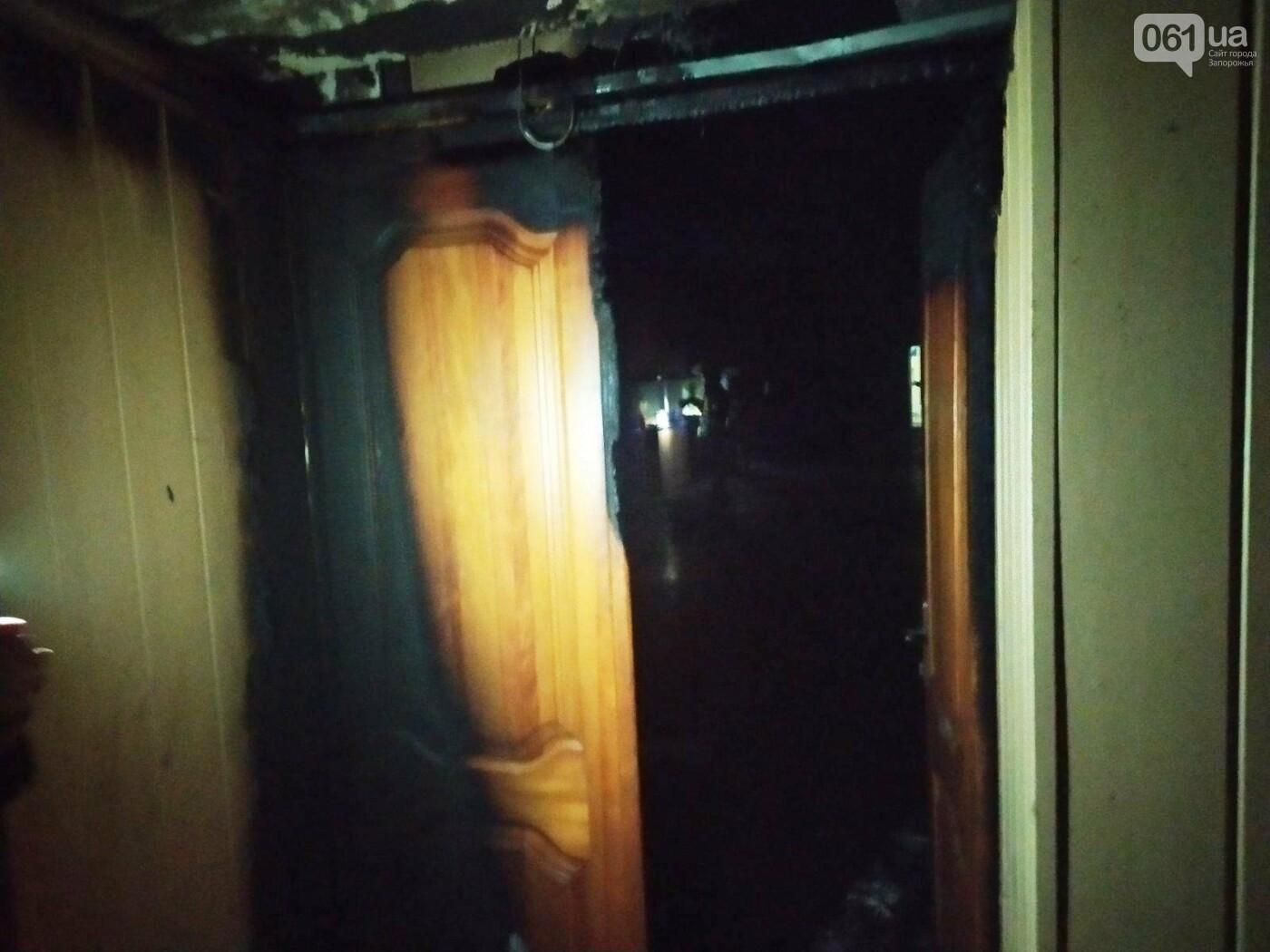 В Запорожье в ДК «Днепроспецсталь» горел выставочный зал: погибли несколько питомцев, - ФОТО, фото-1
