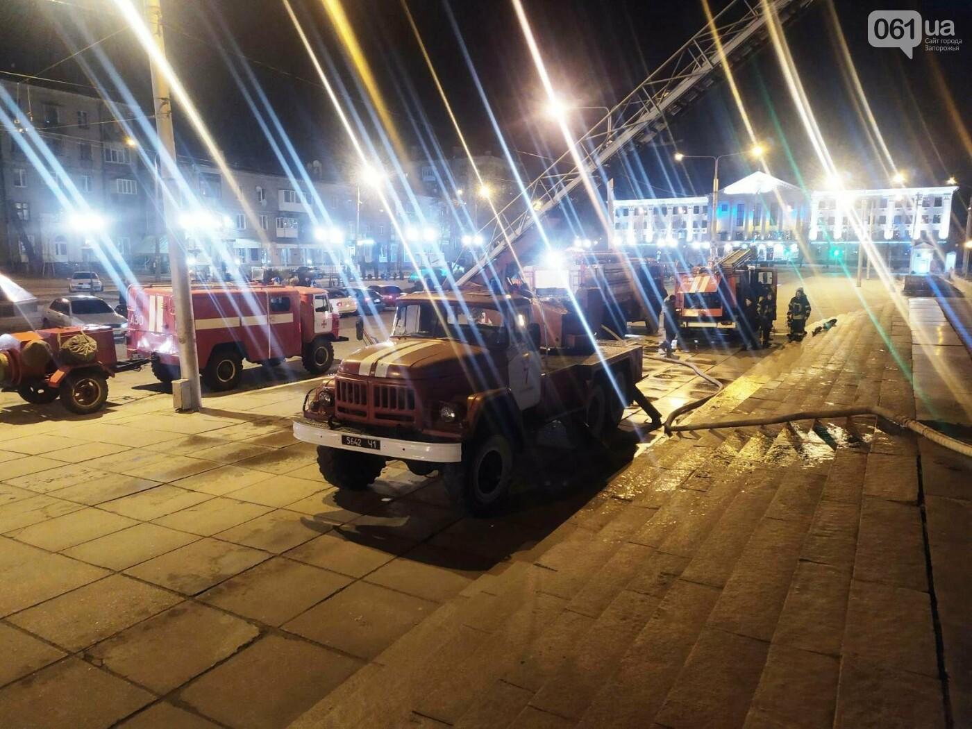 В Запорожье в ДК «Днепроспецсталь» горел выставочный зал: погибли несколько питомцев, - ФОТО, фото-5