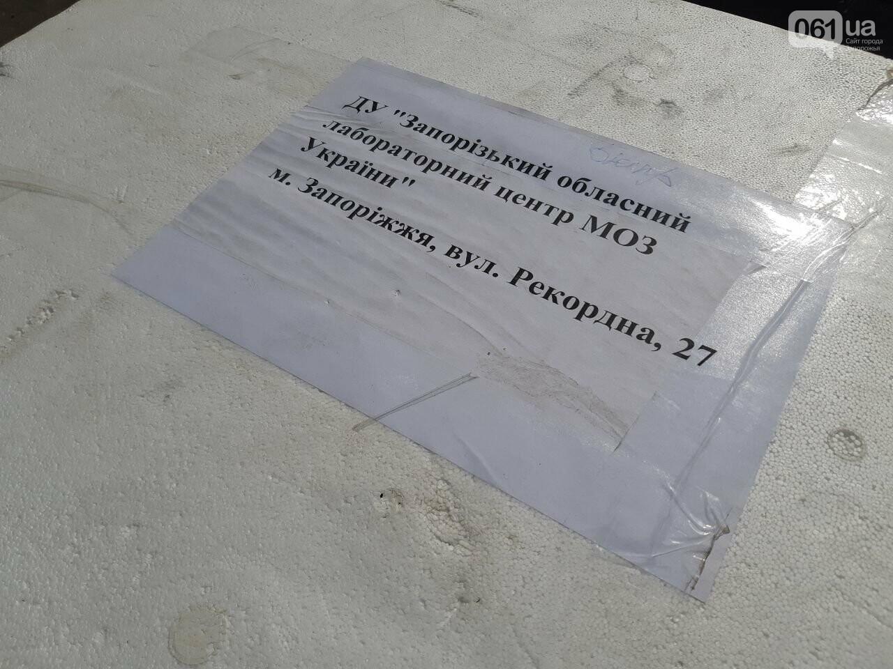 Запорожская область получила партию ПЦР-тестов - запасов хватит на 4 тысячи человек, - ФОТО, фото-3