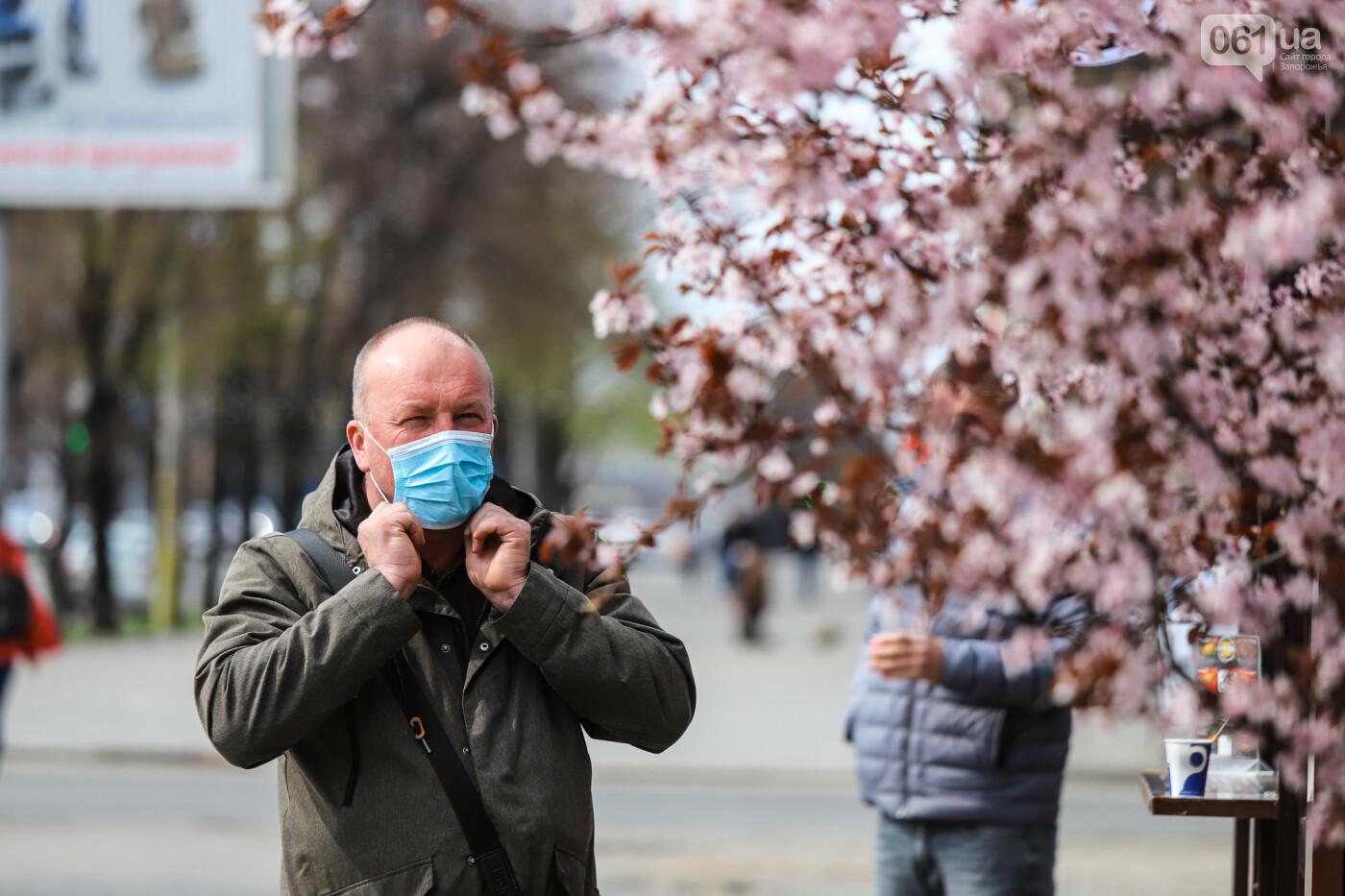 Вход только в масках: как выглядит Запорожье на карантине, - ФОТОРЕПОРТАЖ, фото-13