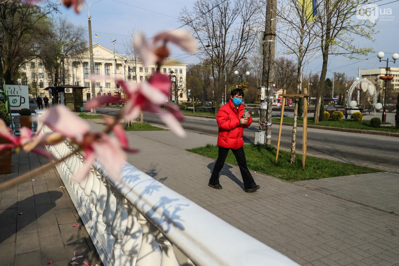 Вход только в масках: как выглядит Запорожье на карантине, - ФОТОРЕПОРТАЖ, фото-58