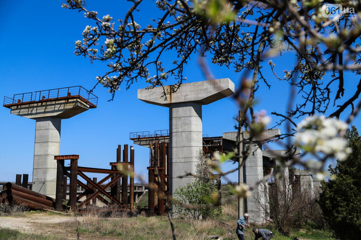На запорожские мосты выделено 2,7 миллиарда: что сейчас проиходит стройплощадке, - ФОТОРЕПОРТАЖ, фото-31