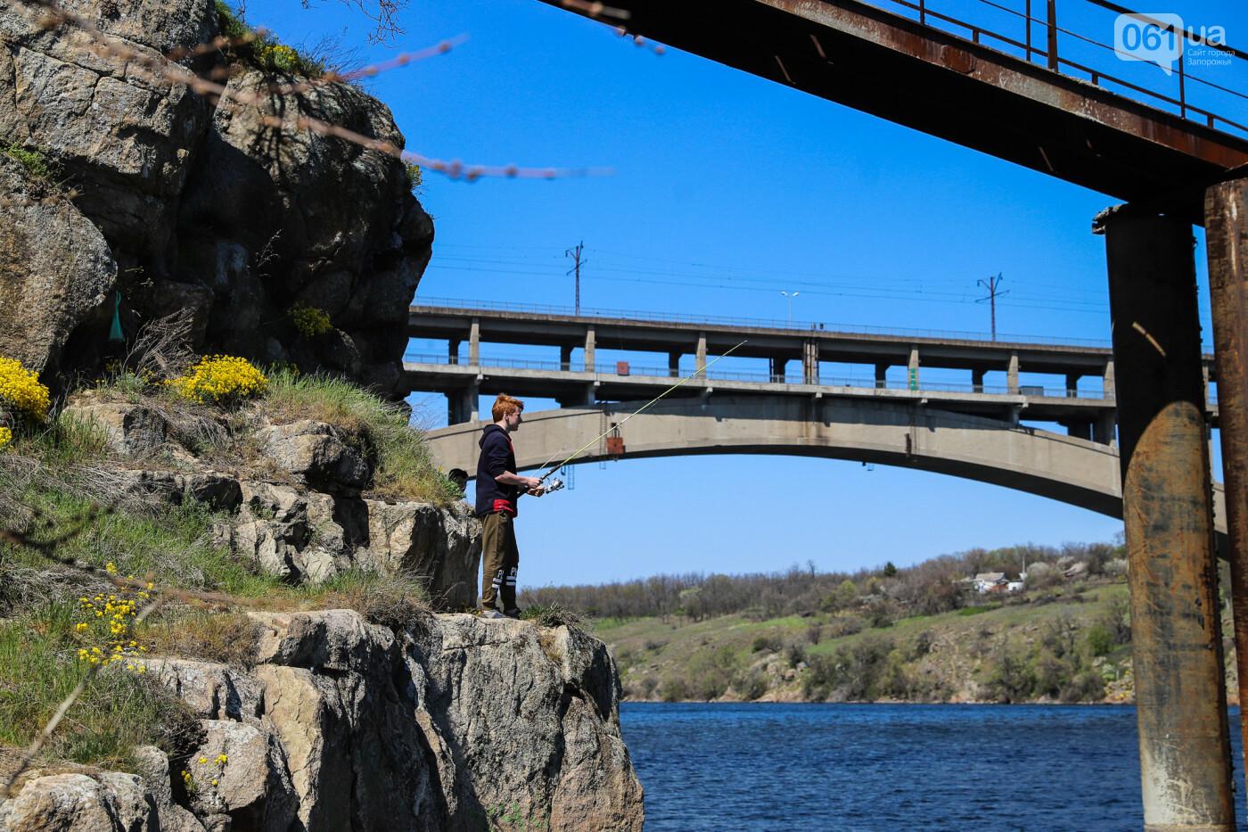 На запорожские мосты выделено 2,7 миллиарда: что сейчас проиходит стройплощадке, - ФОТОРЕПОРТАЖ, фото-41