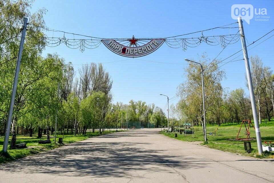 Запорожские парки готовят к майским праздникам — коммунальщики высаживают тысячи цветов, - ФОТОРЕПОРТАЖ, фото-10