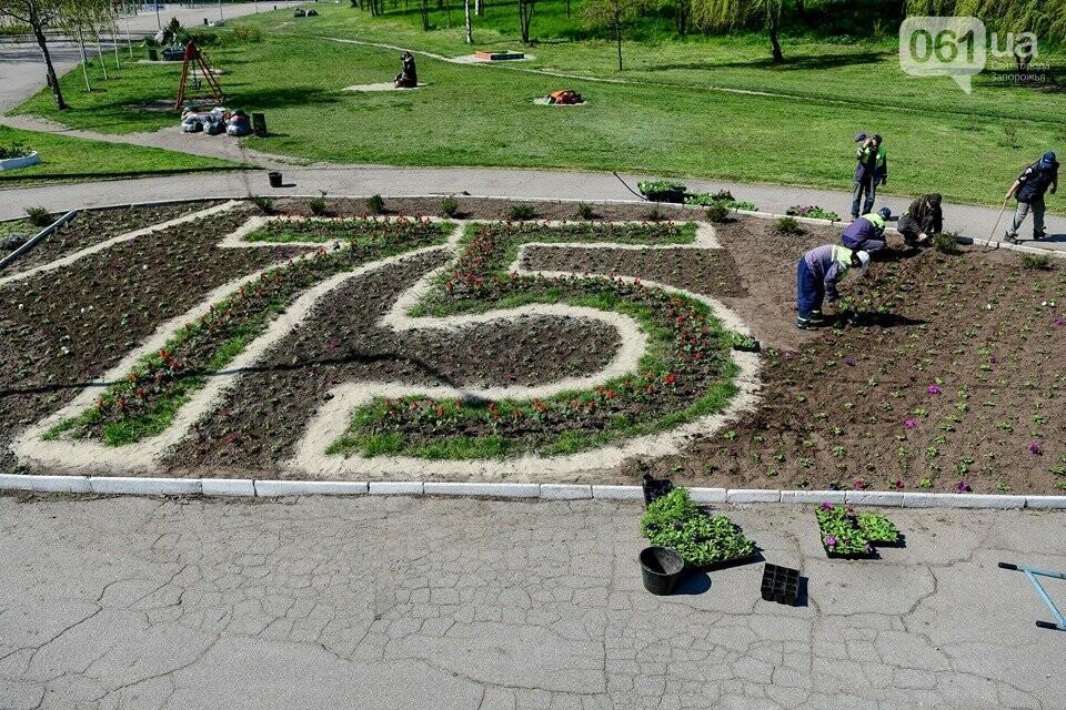 Запорожские парки готовят к майским праздникам — коммунальщики высаживают тысячи цветов, - ФОТОРЕПОРТАЖ, фото-1