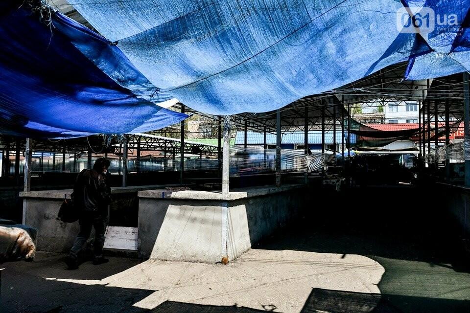 В Запорожье с 1 мая откроются два продовольственных рынка, фото-2