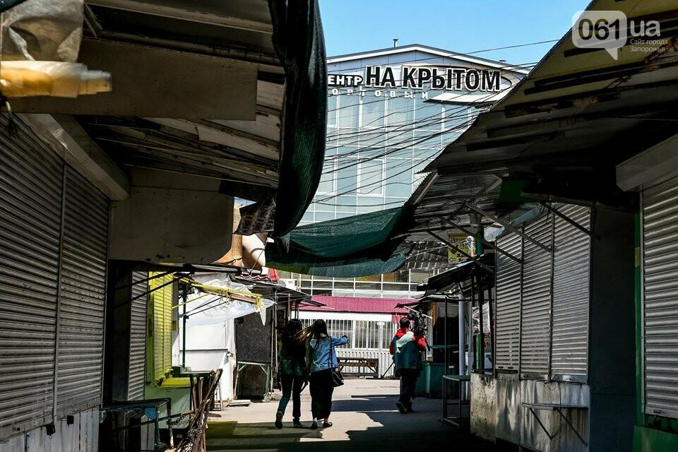 В Запорожье с 1 мая откроются два продовольственных рынка, фото-13
