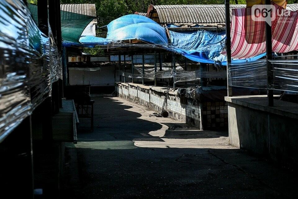 В Запорожье с 1 мая откроются два продовольственных рынка, фото-9