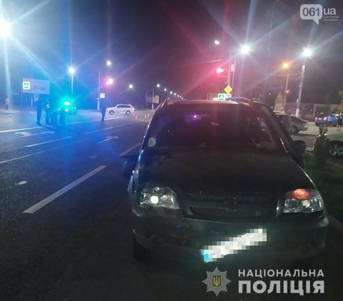 В Запорожской области водитель автомобиля сбил пешеходов, которые переходили дорогу на красный свет, фото-1