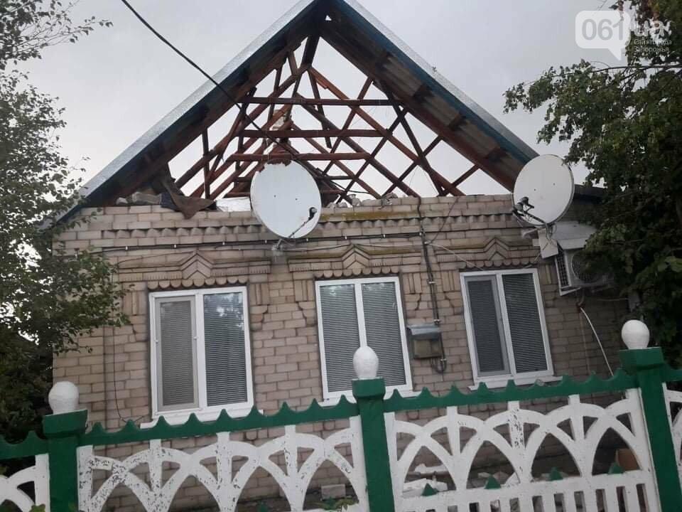 Шквальный ветер обесточил дома и повалил деревья в Запорожской области, - ФОТО, фото-4