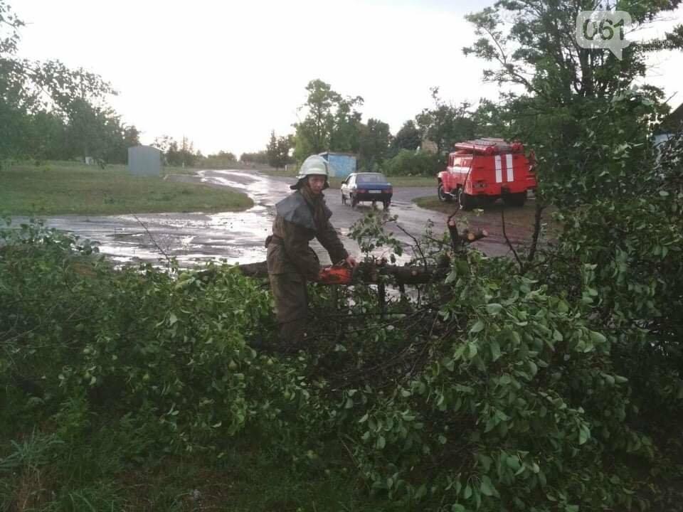 Шквальный ветер обесточил дома и повалил деревья в Запорожской области, - ФОТО, фото-3