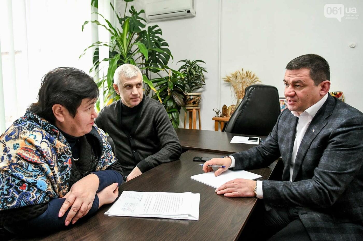 Кто помогает и советует запорожскому мэру, губернатору и главе облсовета, фото-3