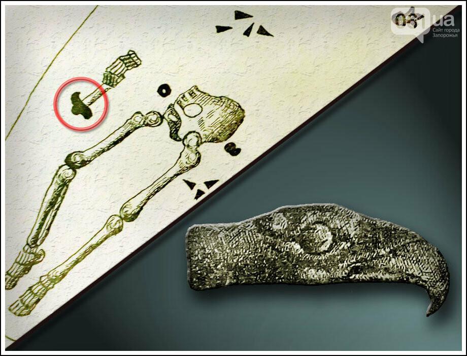 Следами археологической экспедиции Днепростроя: Запорожский грифон, фото-2