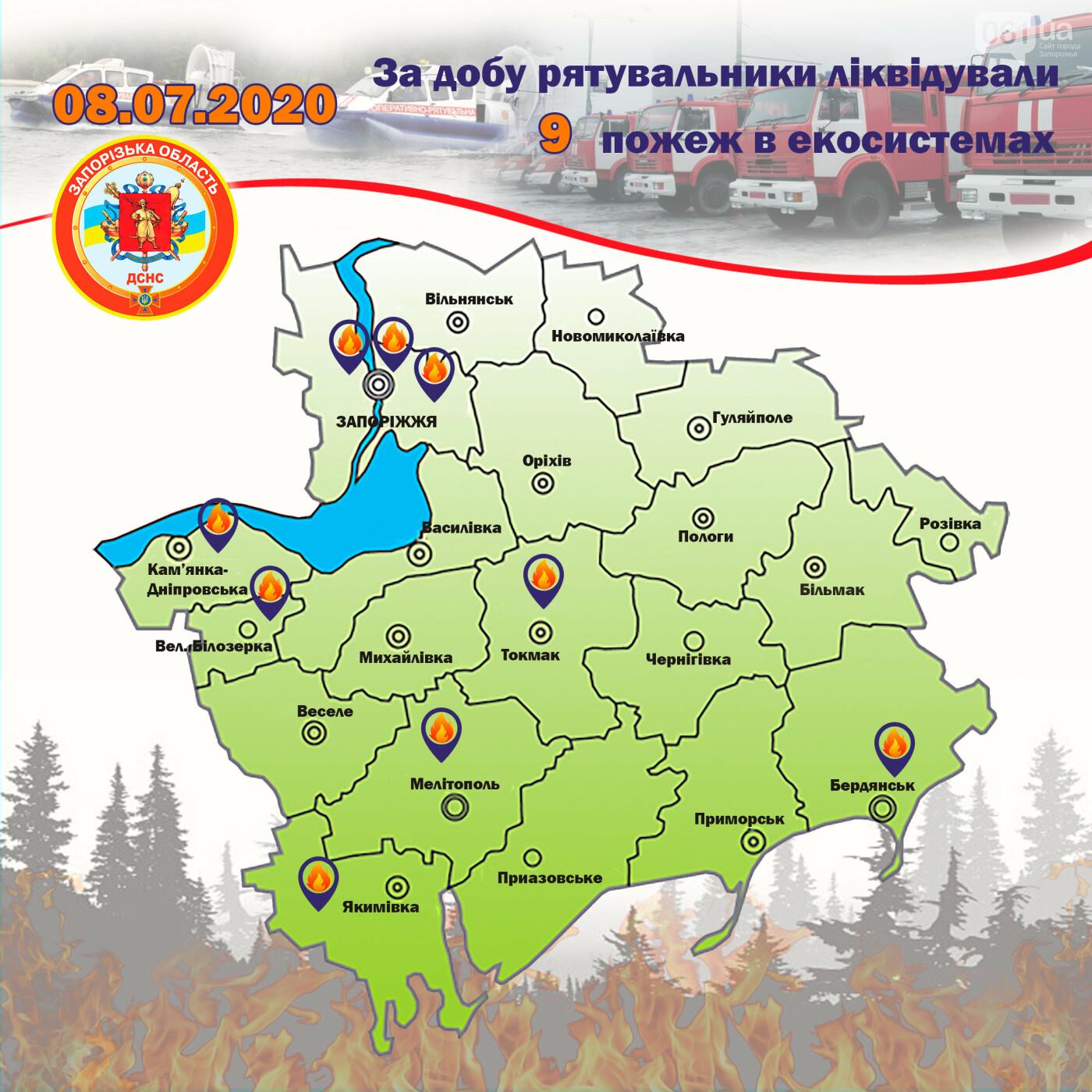 Вчера в Запорожской области случилось 9 пожаров в экосистемах, фото-1