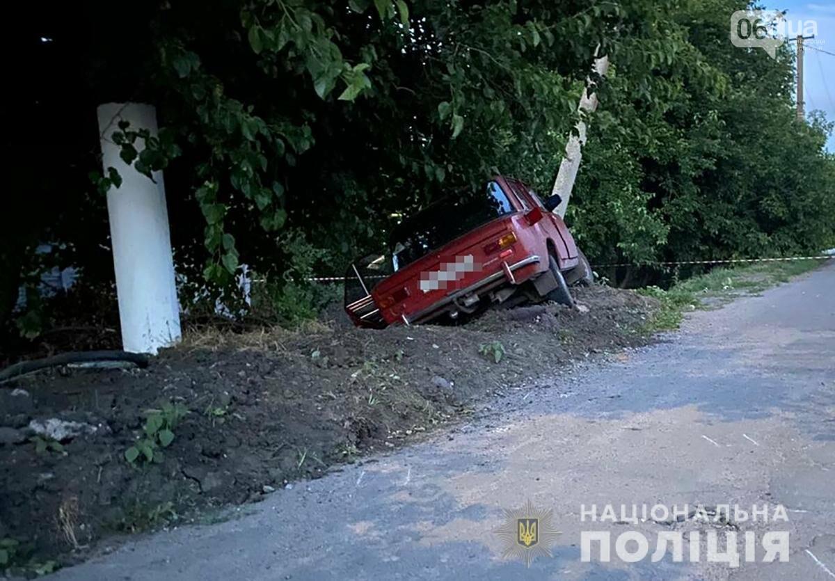 В Запорожской области пьяный водитель ВАЗ насмерть сбил велосипедиста , фото-2