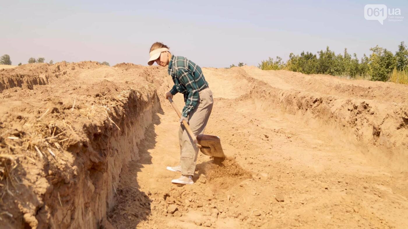 На раскопках Мамай-Горы заработал бульдозер: что уже удалось найти археологам, - ФОТО, фото-4