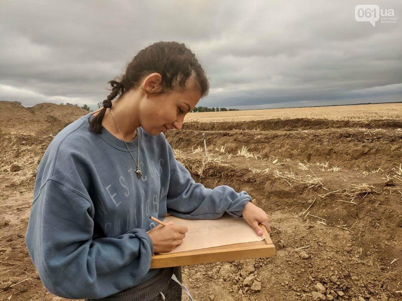 На раскопках Мамай-Горы заработал бульдозер: что уже удалось найти археологам, - ФОТО, фото-7