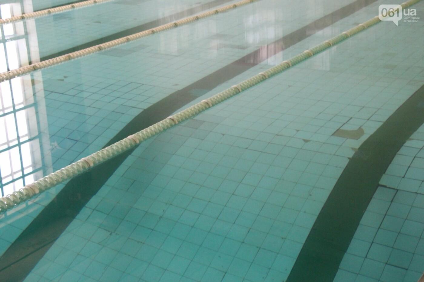 """В Запорожье впервые за 50 лет начали реконструкцию бассейна """"Салют"""", фото-8"""