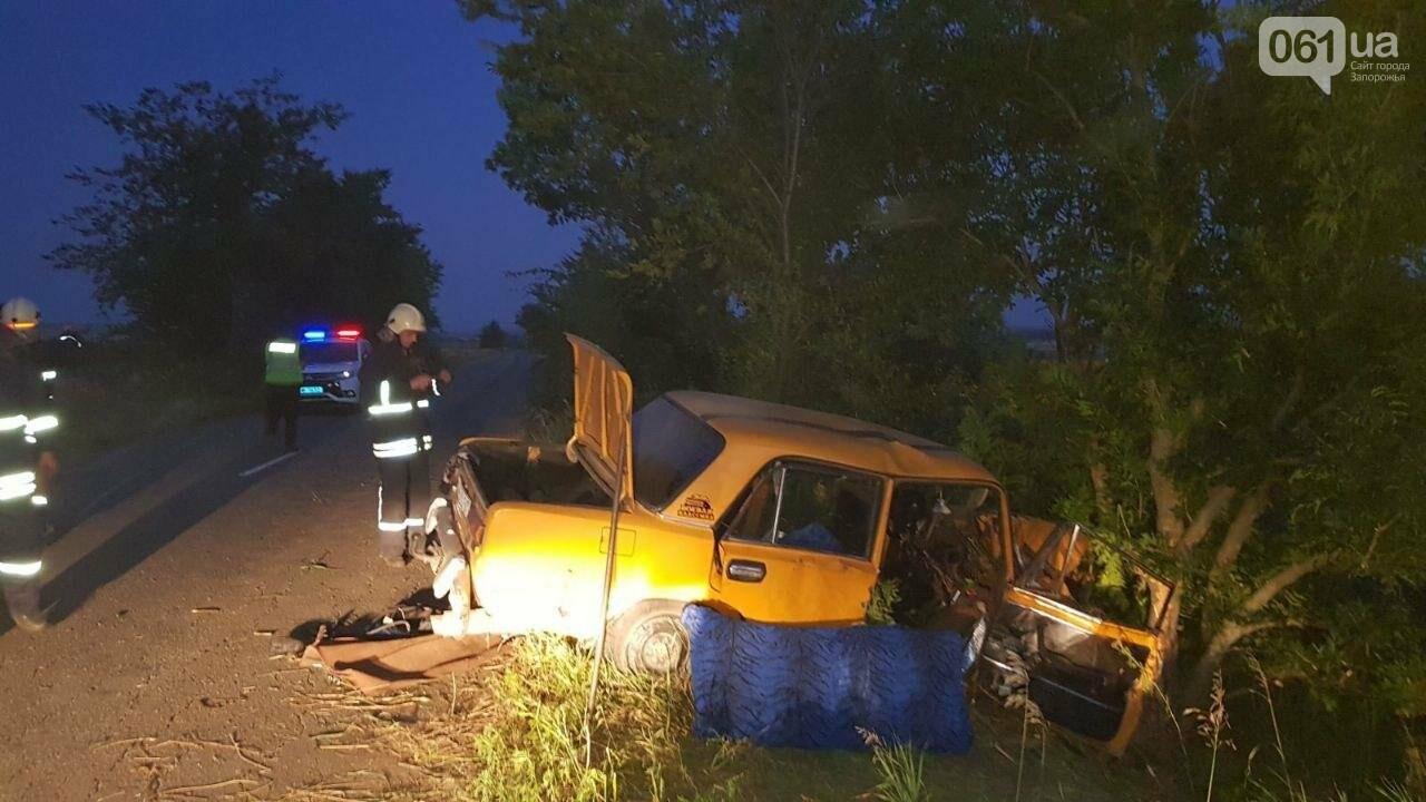 В Запорожской области водитель потерял управление и врезался в дерево: есть пострадавшие, фото-1