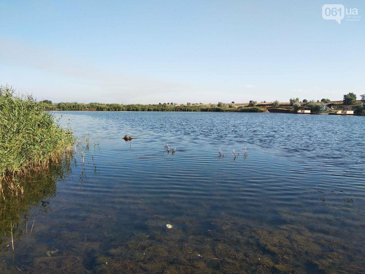 В Запорожской области водолазы вытащили из ставка тело мужчины , фото-1