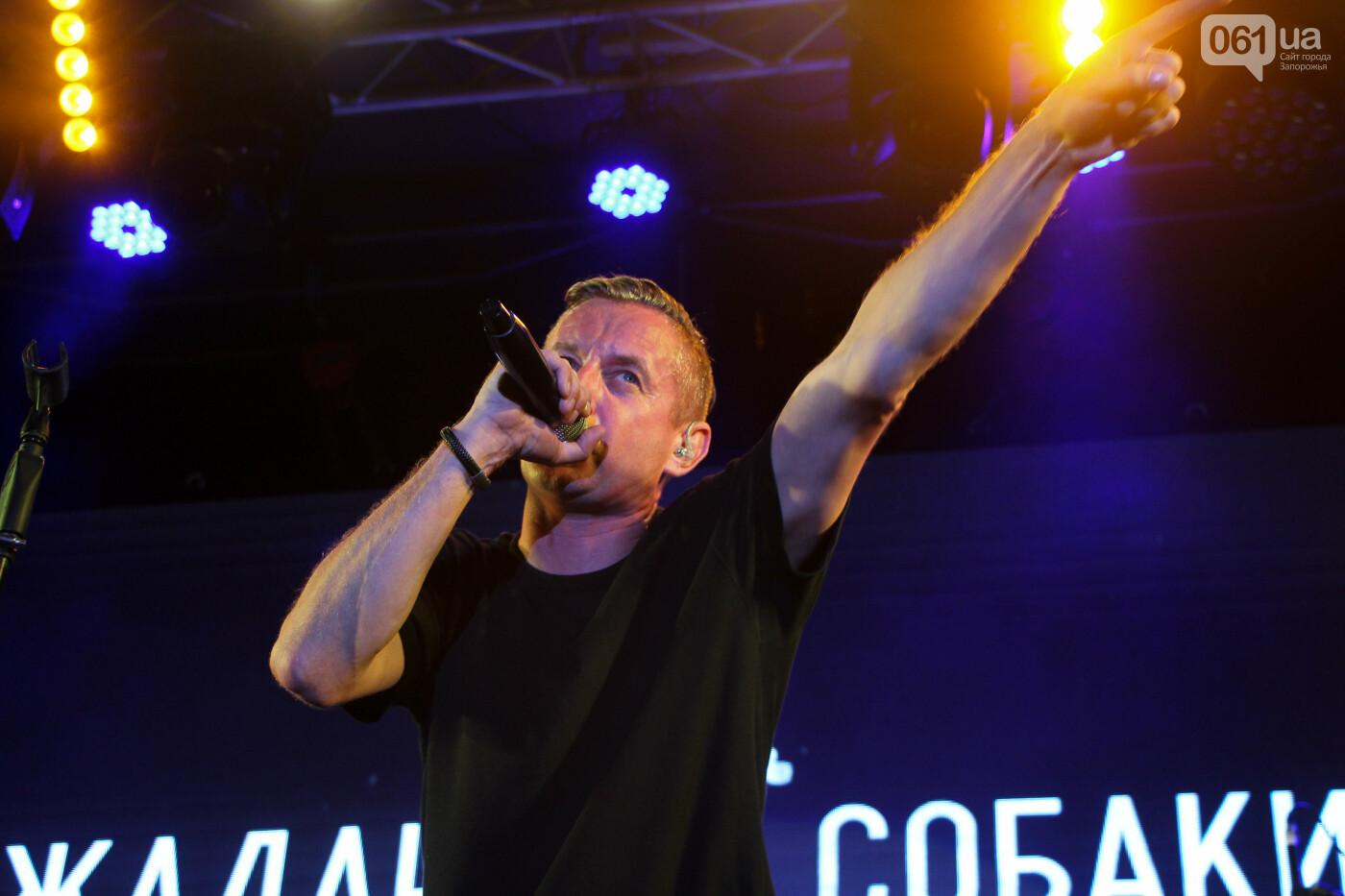Концерт группы «Жадан і Собаки» собрал сотни запорожцев: как это было, - ФОТОРЕПОРТАЖ, фото-10