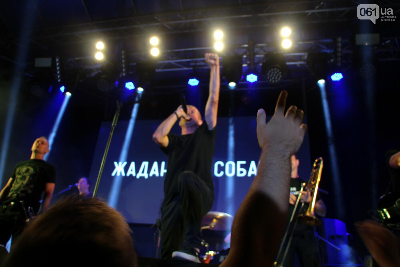 Концерт группы «Жадан і Собаки» собрал сотни запорожцев: как это было, - ФОТОРЕПОРТАЖ, фото-5