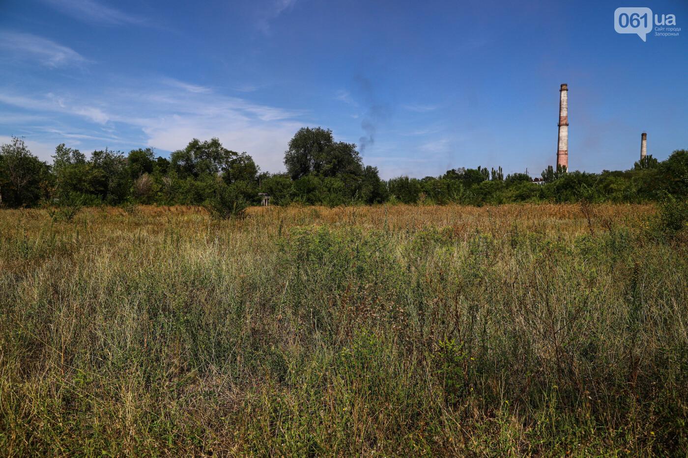 В Запорожье строить ледовую арену за цирком будет фирма, которая зарегистрирована в поле, фото-15