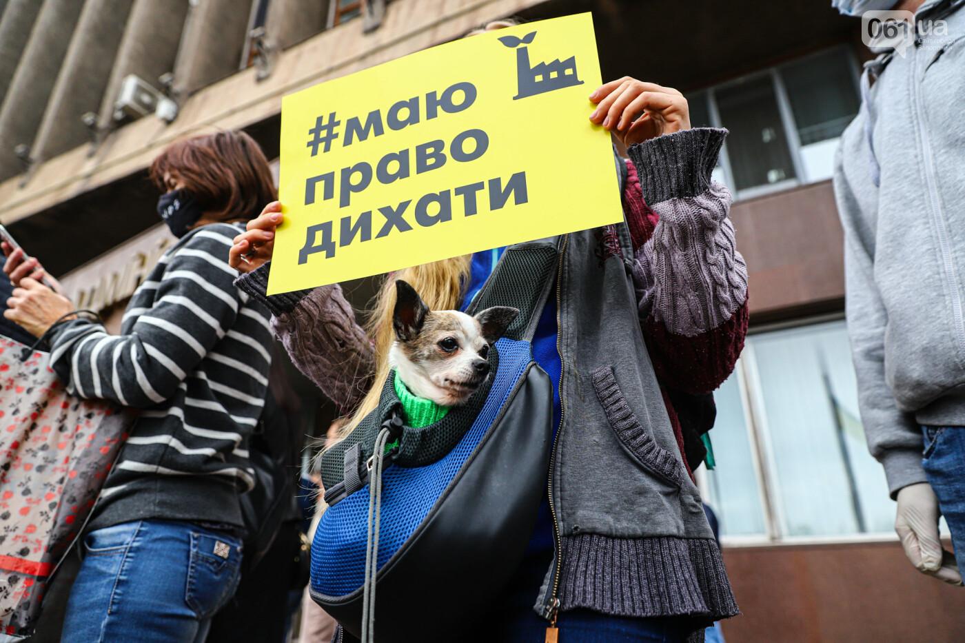 Маю право дихати: тысячи запорожцев вышли на экологический митинг, ФОТО, ВИДЕО, фото-45