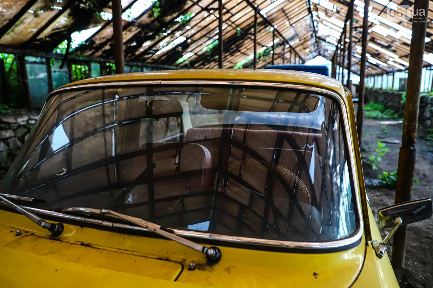 В Запорожье на месте зеленхоза одного из заводов появится Музей специального транспорта, - ФОТОРЕПОРТАЖ, фото-45