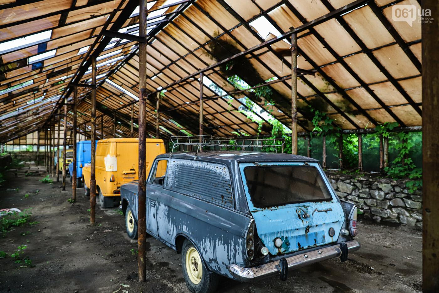 В Запорожье на месте зеленхоза одного из заводов появится Музей специального транспорта, - ФОТОРЕПОРТАЖ, фото-46
