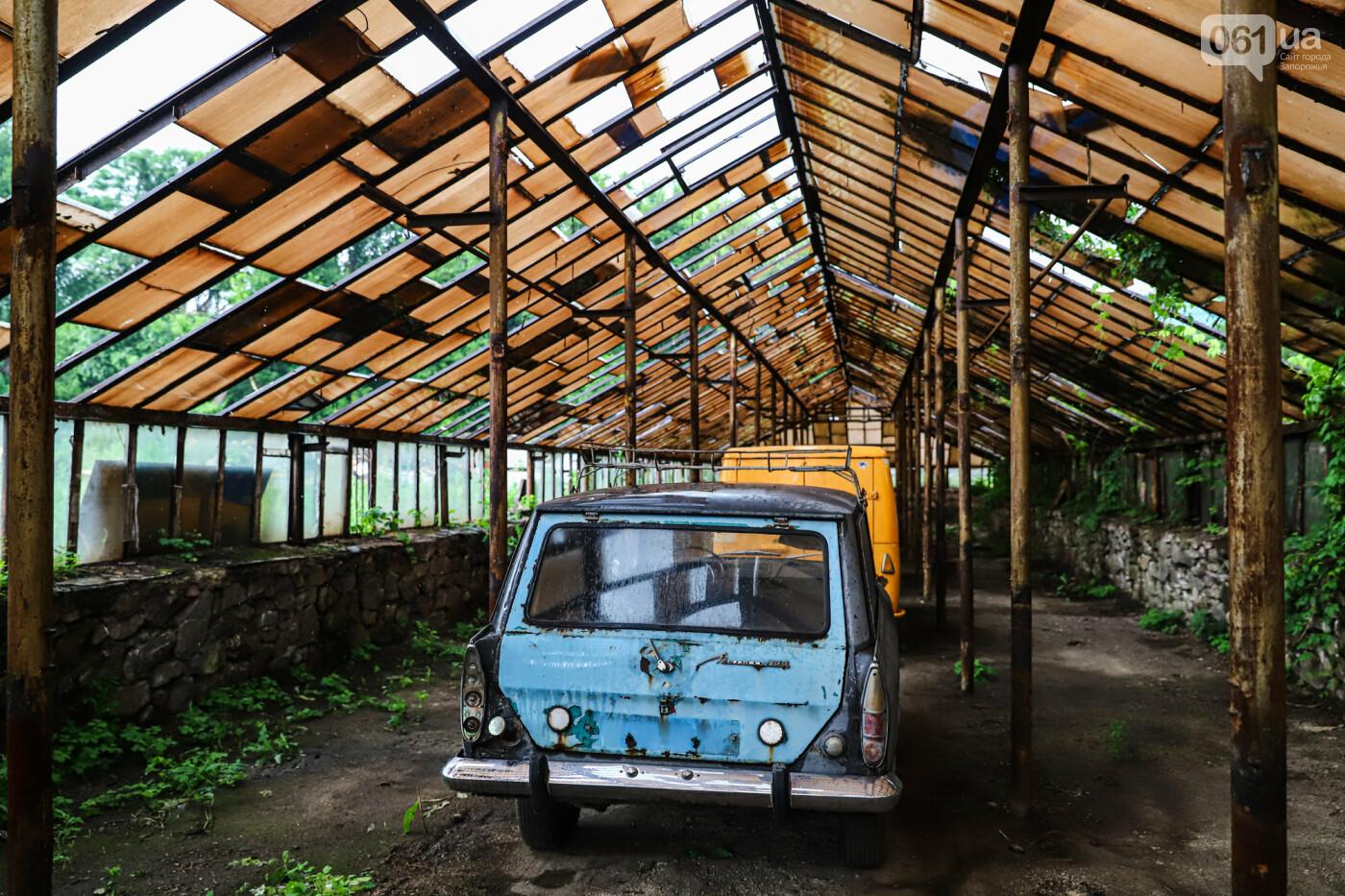 В Запорожье на месте зеленхоза одного из заводов появится Музей специального транспорта, - ФОТОРЕПОРТАЖ, фото-40